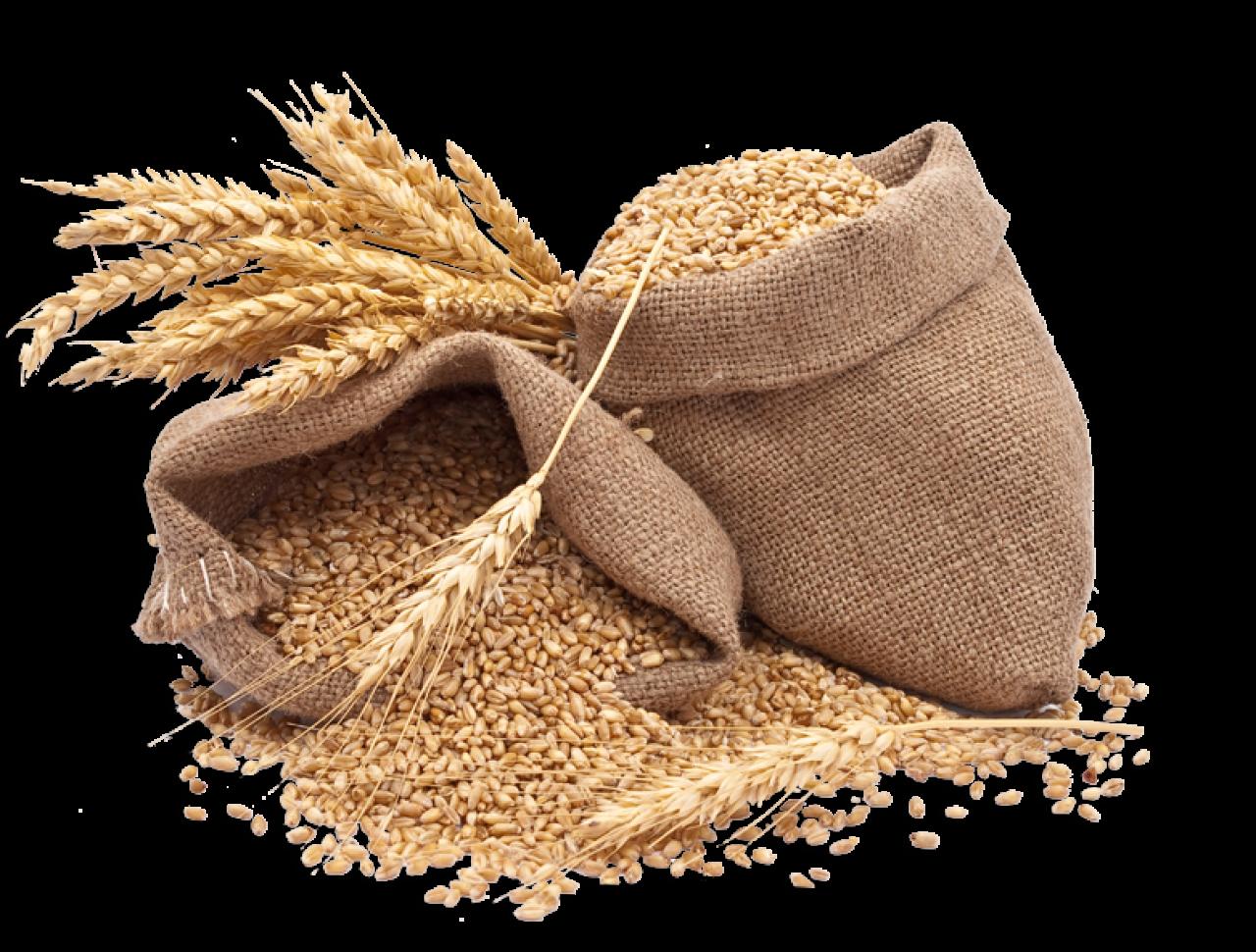 kisspng-cereal-rice-food-whole-grain-wheat-whole-grains-5b5e0575221c51.5453307915328884371397